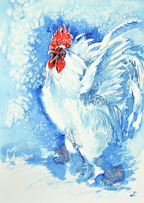 Painting - White Rooster  by Zaira Dzhaubaeva