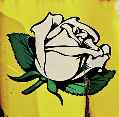 Photograph - White Rose Gasoline by Brian Sereda