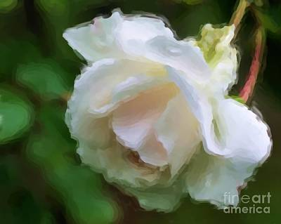 Art Print featuring the painting White Rose In Paint by Smilin Eyes  Treasures