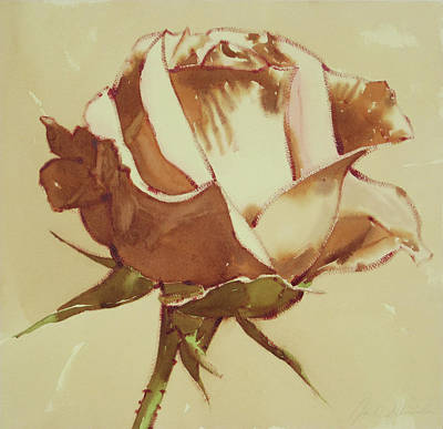 Painting - White Rose by Joe Schneider