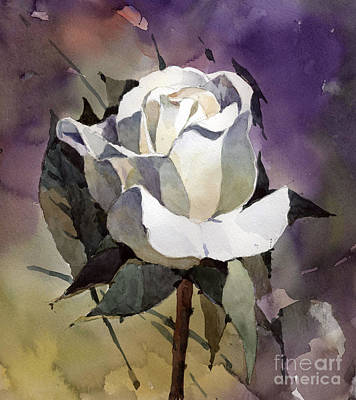 White Rose Art Print by Natalia Eremeyeva Duarte