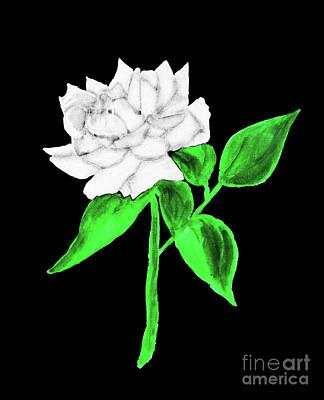Painting - White Rose, Painting by Irina Afonskaya