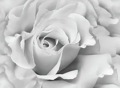 Art Print featuring the photograph White Rose Ruffles Monochrome by Jennie Marie Schell