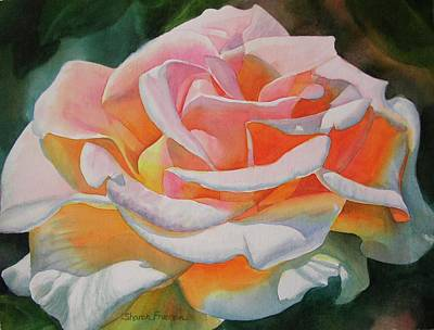 Realistic Flower Painting - White Rose With Orange Glow by Sharon Freeman