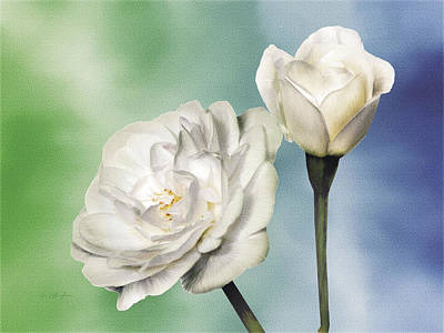 White Roses Art Print by Jan Baughman