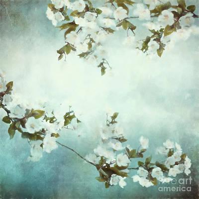 Impressionism Mixed Media - White Sakura Blossoms by Shanina Conway
