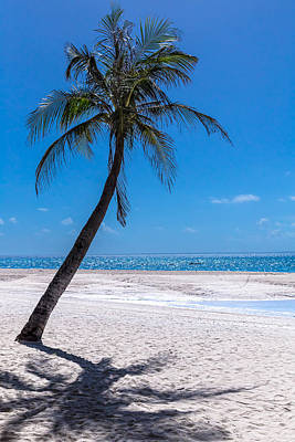 Photograph - White Sand Beaches And Tropical Blue Skies by James BO Insogna