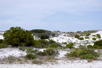 White Sand Dunes Art Print by Tina B Hamilton