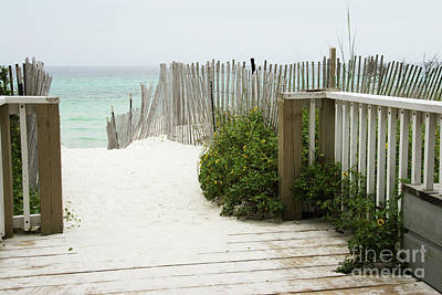 Photograph - White Sand Walkway To A Florida Beach  by Vizual Studio