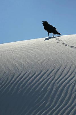 Photograph - White Sands 15 by Jeff Brunton