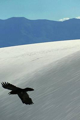 Photograph - White Sands 16 by Jeff Brunton