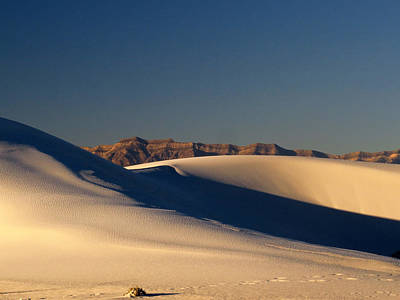 Photograph - White Sands Dawn #136 by Cindy McIntyre