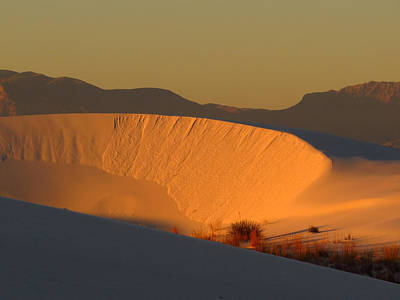 Photograph - White Sands Dawn #35 by Cindy McIntyre