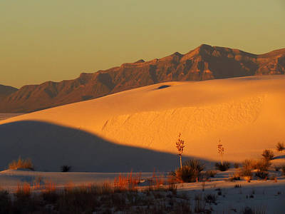 Photograph - White Sands Dawn #37 by Cindy McIntyre