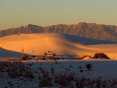 Photograph - White Sands Dawn #40 by Cindy McIntyre