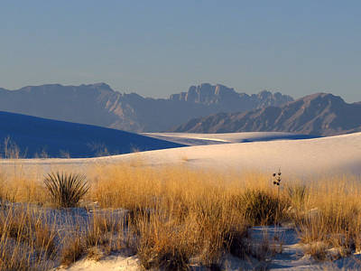 Photograph - White Sands Dawn #85 by Cindy McIntyre