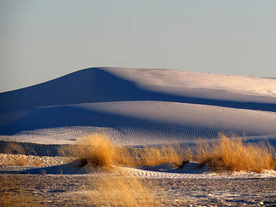 Photograph - White Sands Evening #11 by Cindy McIntyre