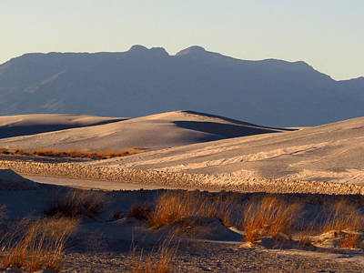 Photograph - White Sands Evening #13 by Cindy McIntyre