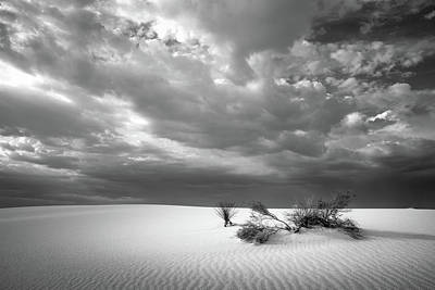 Photograph - White Sands In Bw by James Barber