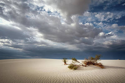 Photograph - White Sands by James Barber