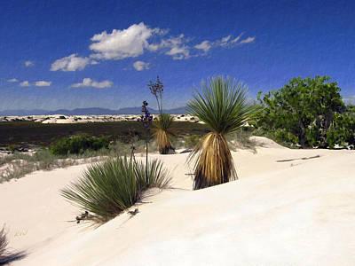 Photograph - White Sands by Kurt Van Wagner