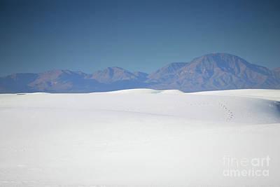 Photograph - White Sands Mountain Dunes Landscape by Andrea Hazel Ihlefeld