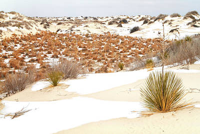 Photograph - White Sands National Monument Winter Snow - New Mexico by Brian Harig