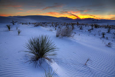 White Sands Sunset Art Print by Peter Tellone