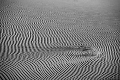White Sands Texture Art Print
