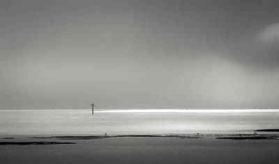 Egret Landscape Photograph - White Sandy Shore- B/w by Marvin Spates