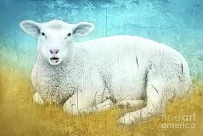 White Sheep Art Print