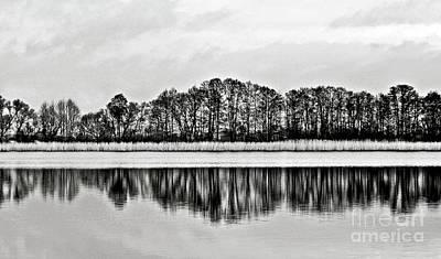Balck Art Photograph - White Sinfony Of Winter Lake by Silva Wischeropp