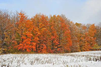 White Snow In Autumn Art Print