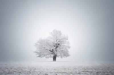 White Solitude And Light Art Print by Janek Sedlar