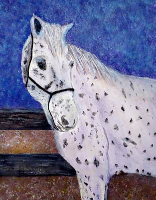 Painting - white spotted Horse by Anne Sands