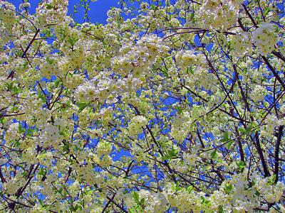 White Spring. Tsaritsyno. Original
