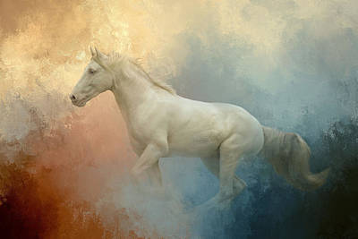 Photograph - White Stallion by Pam Kaster