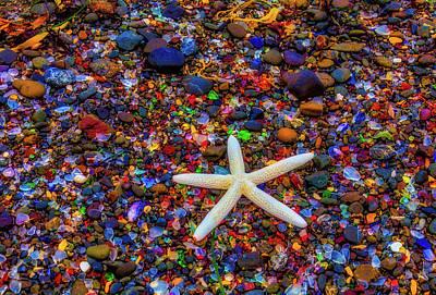 Photograph - White Starfish Among Sea Glass by Garry Gay