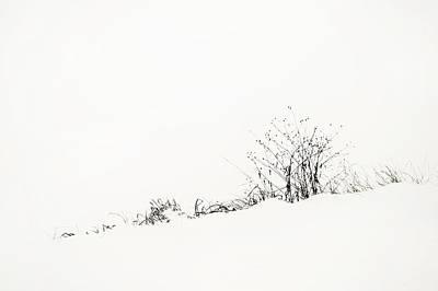 Photograph - White Stillness. Minimalism by Jenny Rainbow