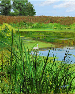 Wall Art - Painting - White Swan In Estuary by C Keith Jones