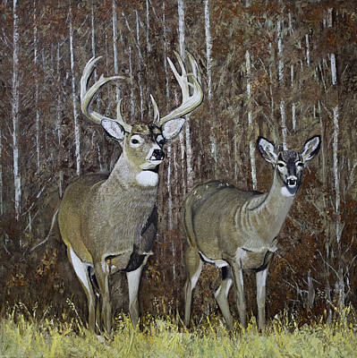 White Tail Couple 24x 24x3/4 Inch Oil On Canvas Original