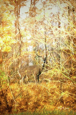Digital Art - White-tail Woods by Barry Jones