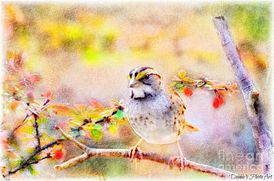 Photograph - White Throated Sparrow - Digital Paint 1                                             by Debbie Portwood