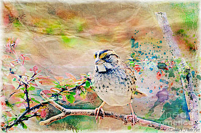 Photograph - White Throated Sparrow - Digital Paint 2 by Debbie Portwood