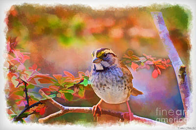 Photograph - White Throated Sparrow - Digital Paint 3 by Debbie Portwood