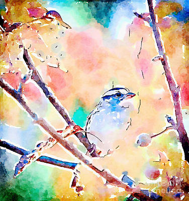 Painting - White-throated Sparrow - Watercolor Art by Kerri Farley