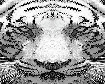 Digital Art - White Tiger #161 by Barbara Tristan