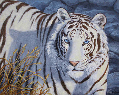 Wild Cat Painting - White Tiger - Crystal Eyes by Crista Forest