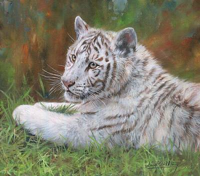 Print featuring the painting White Tiger Cub 2 by David Stribbling