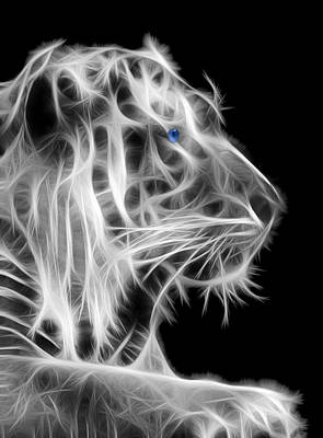 Tiger Fractal Photograph - White Tiger by Shane Bechler